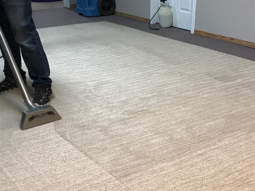 Yorkton Area Rug Cleaner